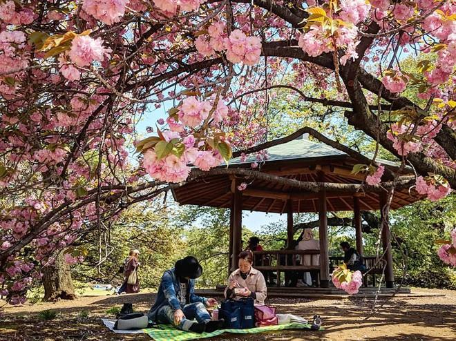 3 lễ hội được trông đợi nhất vào dịp tháng 4 ở châu Á, bạn đi ngay thôi kẻo lỡ
