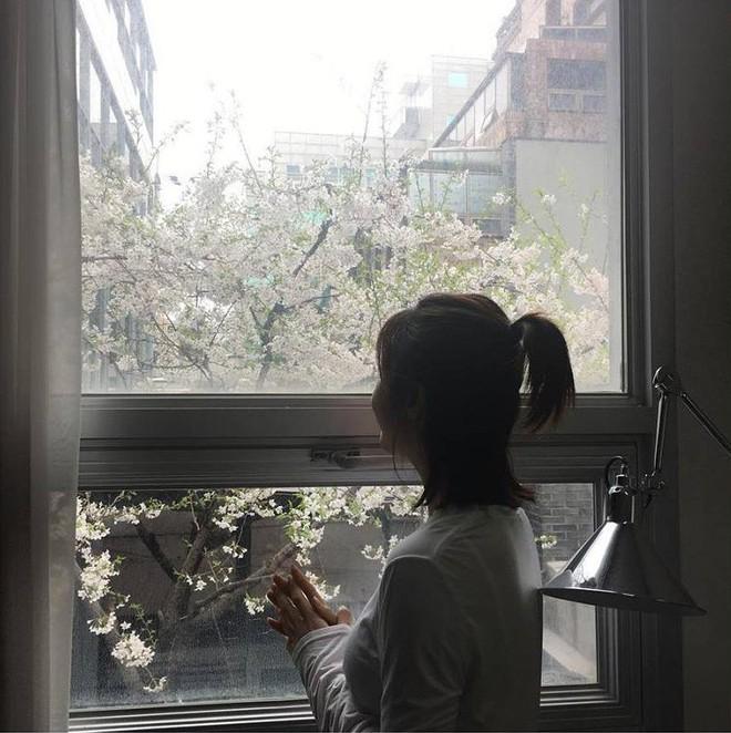 Ha Ji Won: Phụ nữ mạnh mẽ đến mấy cũng cần một bờ vai để bớt chênh vênh - ảnh 9