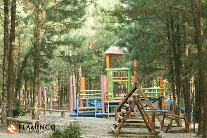 4 resort có khu vui chơi cho trẻ nhỏ chỉ cách trung tâm Hà Nội khoảng 1 giờ đi xe - ảnh 21