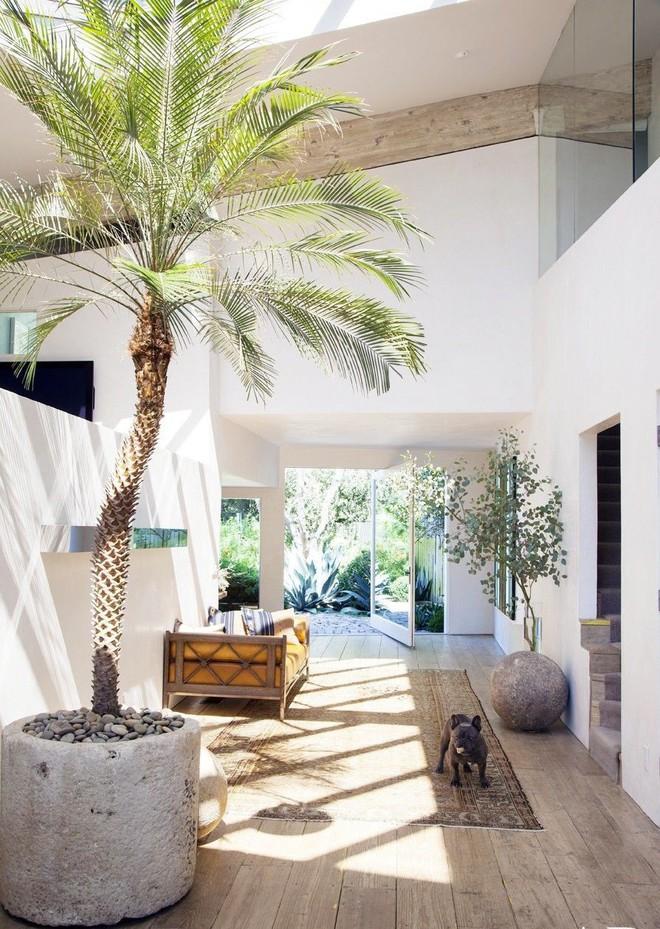 Những cách đơn giản đến bất ngờ khiến ngôi nhà của bạn trở nên trong lành và có sức sống hơn mỗi ngày - Ảnh 1.