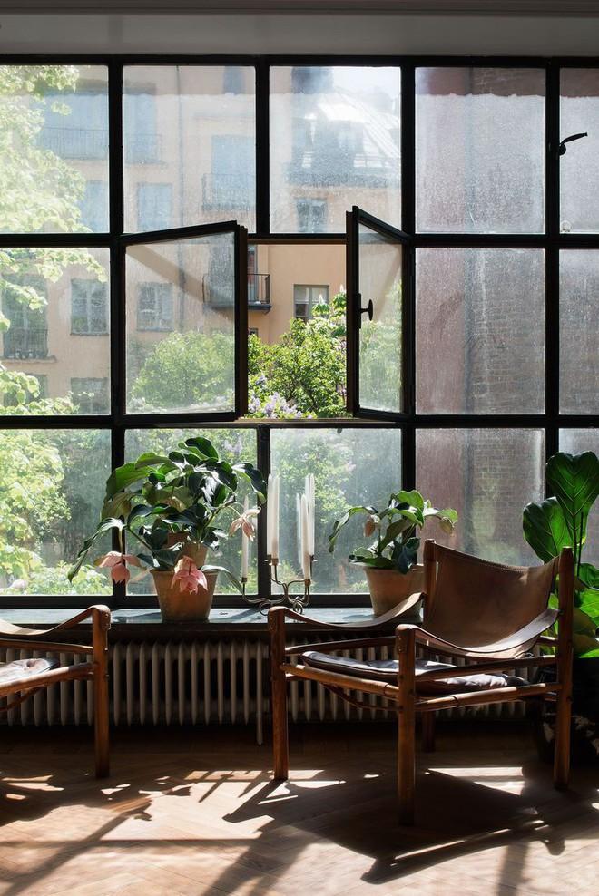 Những cách đơn giản đến bất ngờ khiến ngôi nhà của bạn trở nên trong lành và có sức sống hơn mỗi ngày - Ảnh 3.