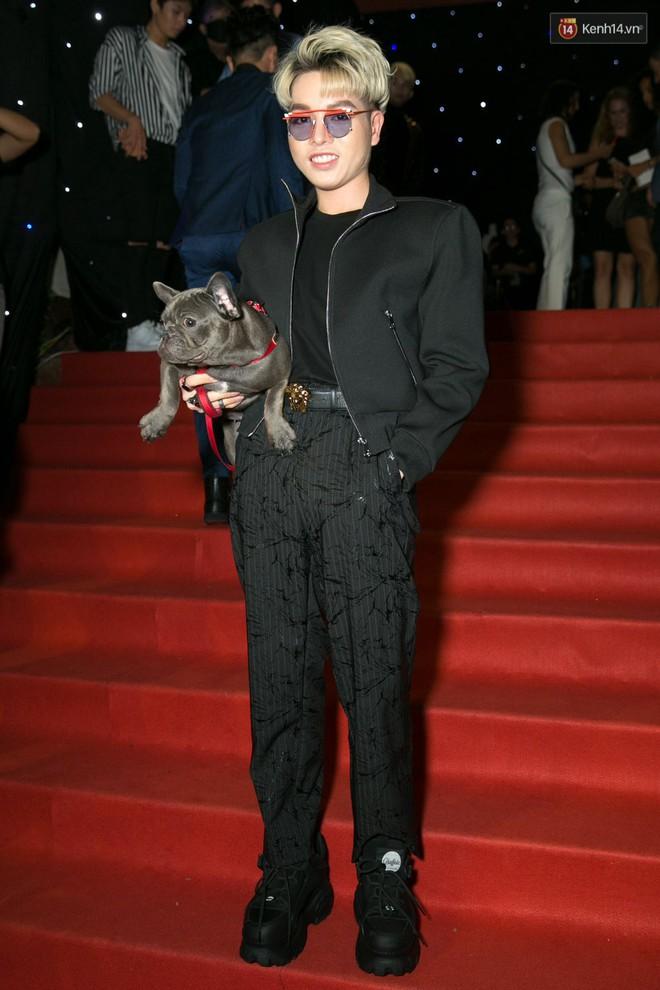 Trước Đức Phúc, đã có Angela Phương Trinh và Minh Hằng cũng bế chó lên thảm đỏ - Ảnh 1.