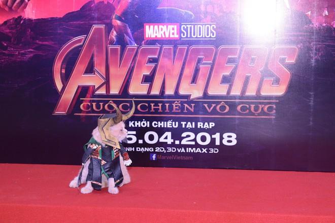 Cả dàn sao Việt đều bị lu mờ trước nhân vật đặc biệt này trong họp báo Avengers - Ảnh 4.