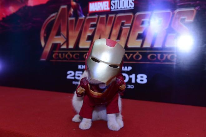Cả dàn sao Việt đều bị lu mờ trước nhân vật đặc biệt này trong họp báo Avengers - Ảnh 5.