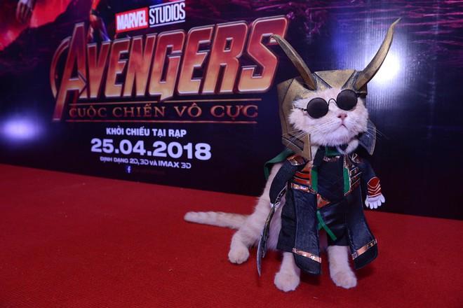 Cả dàn sao Việt đều bị lu mờ trước nhân vật đặc biệt này trong họp báo Avengers - Ảnh 6.