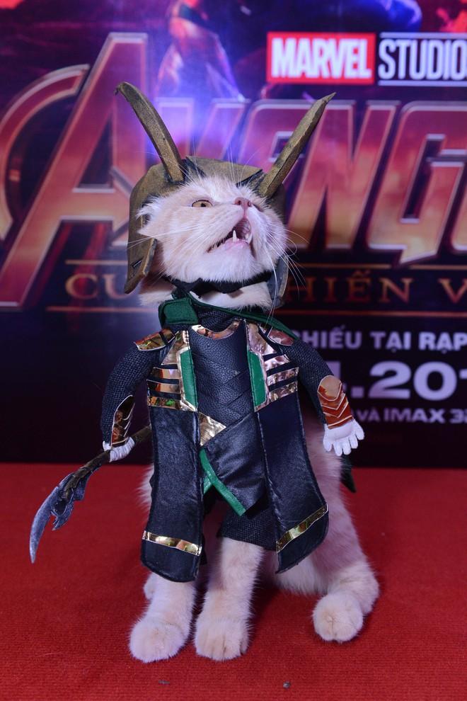 Cả dàn sao Việt đều bị lu mờ trước nhân vật đặc biệt này trong họp báo Avengers - Ảnh 7.