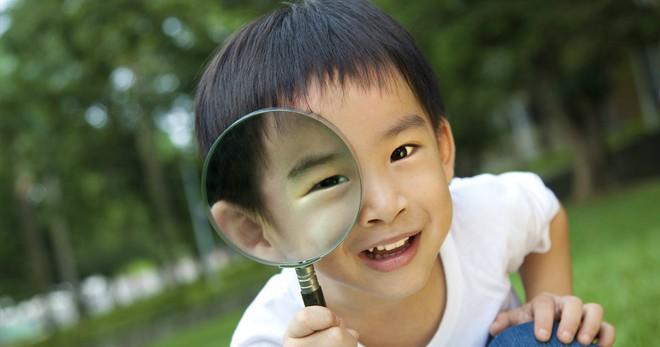 Có 8 loại hình trí thông minh khác nhau, con bạn thuộc nhóm nào? - Ảnh 4.