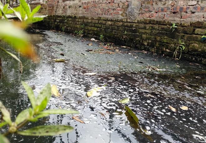 Hà Nội: Hàng nghìn hộ dân hơn 10 năm qua phải ngậm đắng sử dụng nước từ nguồn nước đen, bốc mùi hôi thối - ảnh 10