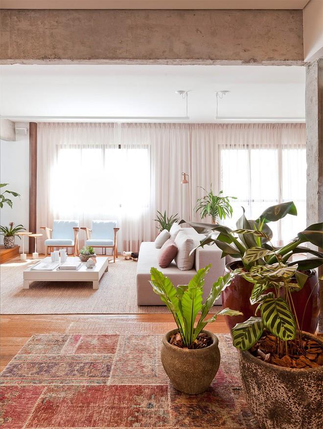 Cải tạo nhà theo hướng tích hợp các phòng và kết quả thật không thể tin nổi - Ảnh 3.