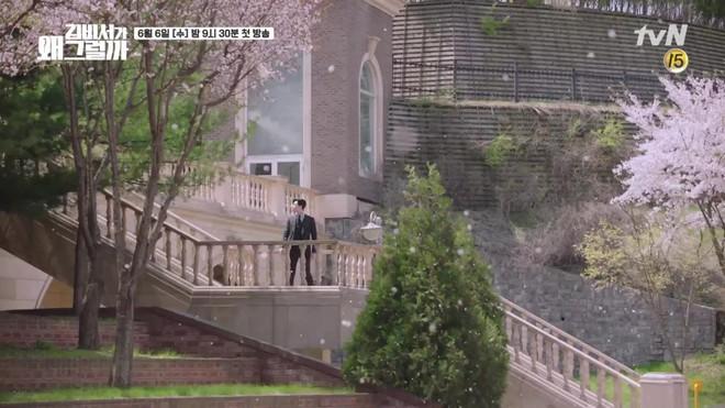 Khổ thân Park Seo Joon, ra sức bắn tim cho Park Min Young nhưng bị hắt hủi chỉ vì... cái tai - Ảnh 4.