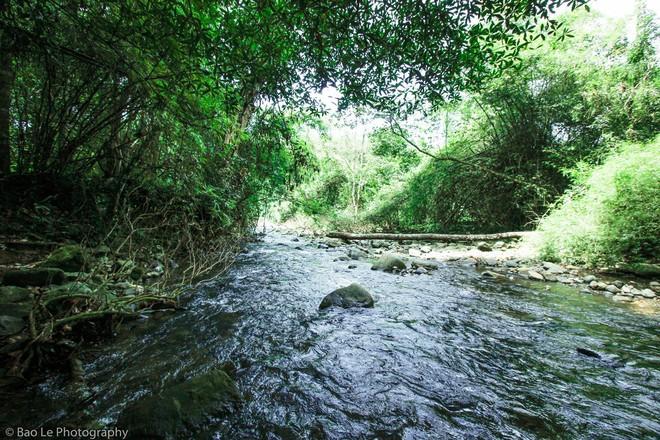 Những tai nạn đáng tiếc ở Tà Năng - Phan Dũng: Cung đường trekking đẹp nhất Việt Nam nhưng cũng đầy hiểm nguy khó lường - Ảnh 8.