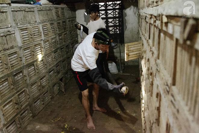 Nông dân kiếm hàng tỷ đồng mỗi năm nhờ nghề lạ - Ảnh 9.