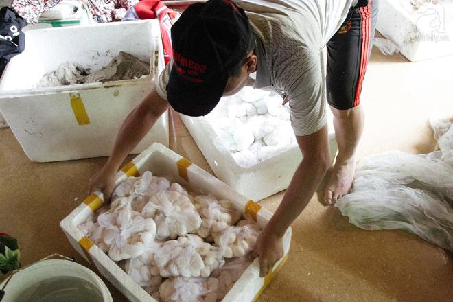 Nông dân kiếm hàng tỷ đồng mỗi năm nhờ nghề lạ - Ảnh 10.