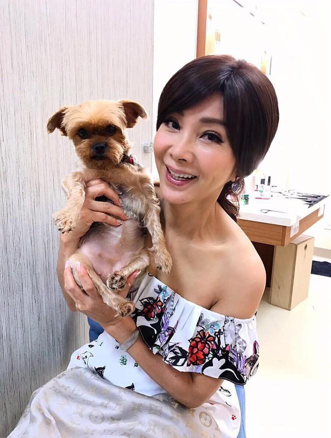 """Ăn mặc gợi cảm lại sở hữu làn da căng bóng, chẳng ai ngờ """"lão bà đẹp nhất Đài Loan"""" năm nay đã 62 tuổi - Ảnh 11."""