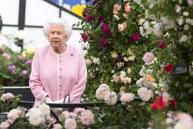 Bộ sưu tập thời trang từ hoa tuyệt đẹp của các nhà thiết kế Hoàng gia Anh - Ảnh 9.