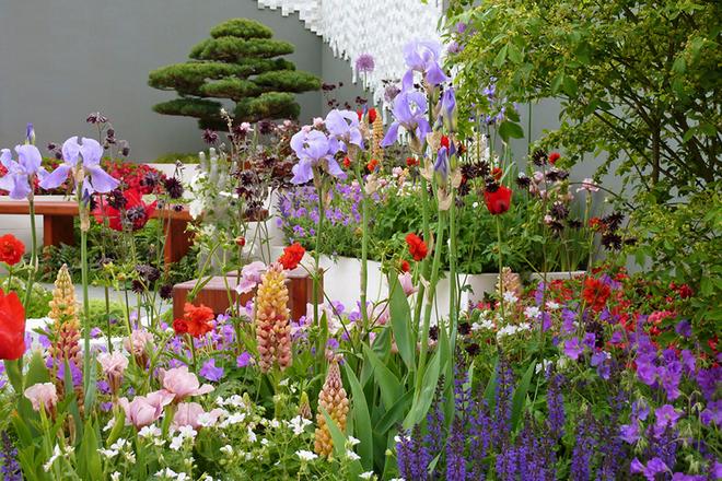 Bộ sưu tập thời trang từ hoa tuyệt đẹp của các nhà thiết kế Hoàng gia Anh - Ảnh 11.