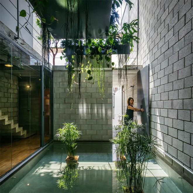 Ngôi nhà ống với mặt tiền cứng nhắc nhưng càng ngắm càng mê nhờ những khu vườn xanh mướt - Ảnh 3.