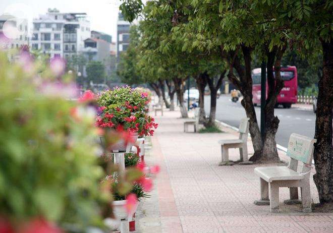 Chùm ảnh phố đi bộ Trịnh Công Sơn gấp rút hoàn thiện trước giờ G - Ảnh 2.