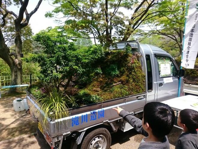 Xe tải cũ hỏng biến thành vườn cây xanh mát đẹp mê li, một lần nữa người Nhật lại khiến thế giới phải choáng váng - ảnh 16