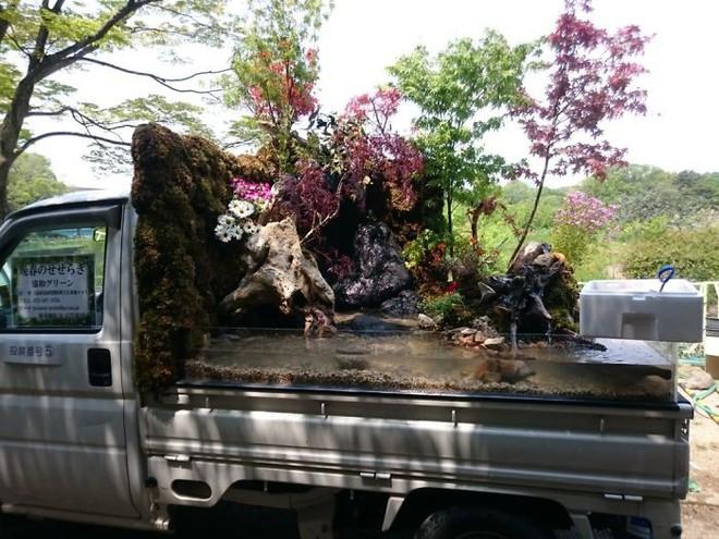 Xe tải cũ hỏng biến thành vườn cây xanh mát đẹp mê li, một lần nữa người Nhật lại khiến thế giới phải choáng váng - ảnh 15
