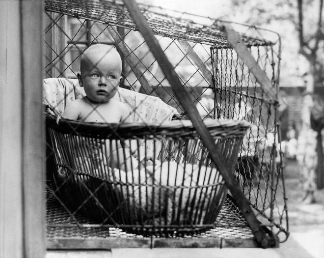 """Phát minh kỳ lạ nhất thế kỷ 20: Những chiếc lồng sắt """"phơi"""" trẻ em bên ngoài cửa sổ khiến nhiều người đứng tim - Ảnh 1."""