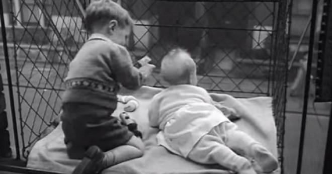 """Phát minh kỳ lạ nhất thế kỷ 20: Những chiếc lồng sắt """"phơi"""" trẻ em bên ngoài cửa sổ khiến nhiều người đứng tim - Ảnh 9."""