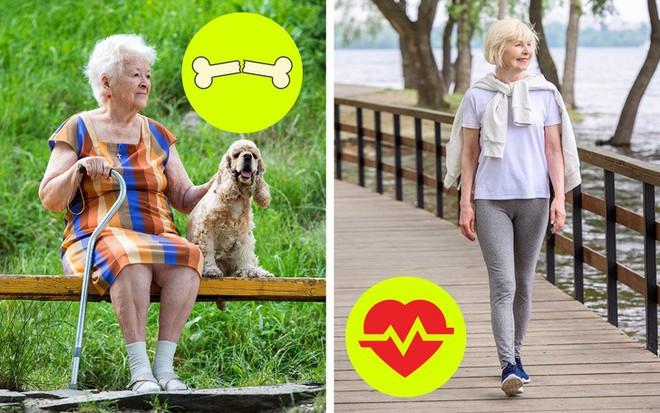 Bất ngờ 8 lợi ích thực sự của việc đi bộ mà chúng ta không bao giờ tưởng tượng ra được - Ảnh 4.