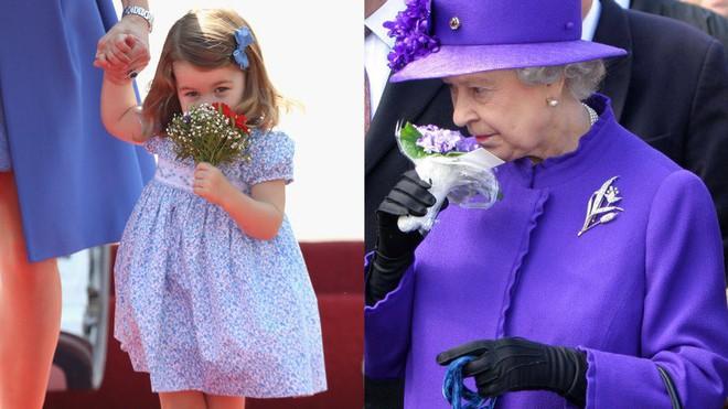 Chả trách Công chúa Charlotte lại có thần thái xuất chúng đến như vậy, hóa ra cô bé chính là bản sao hoàn hảo của Nữ hoàng - Ảnh 11.