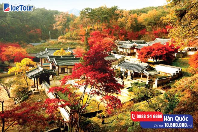 Hàn Quốc, Nhật Bản – điểm đến không thể bỏ qua của những tín đồ du lịch hè này - Ảnh 2.