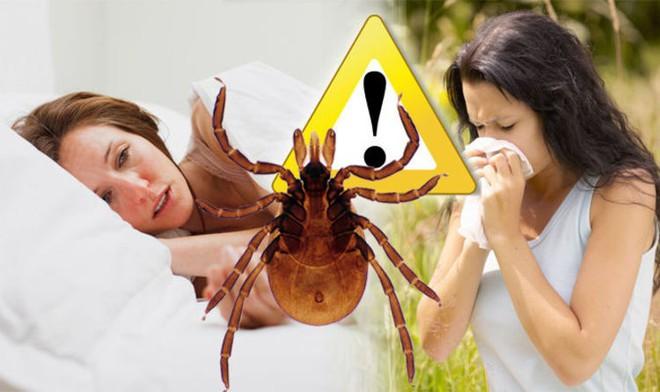 Tưởng chỉ bị côn trùng cắn bình thường, không ngờ người phụ nữ bị bệnh này dẫn đến liệt mặt, không thể nói - Ảnh 5.
