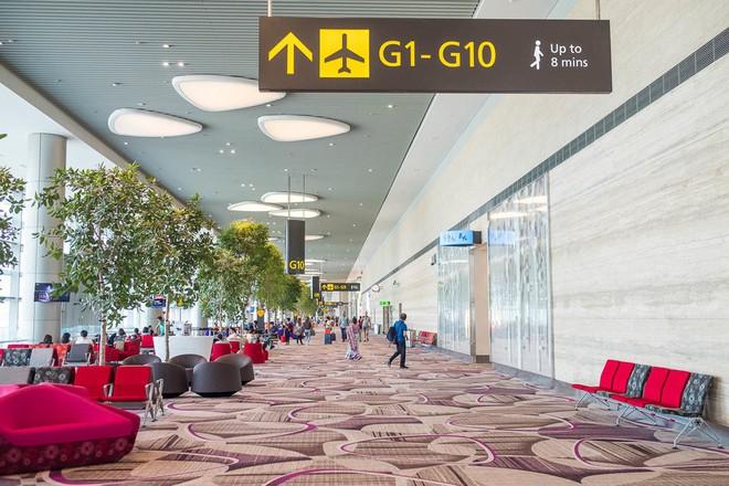 Changi có nhiều tiện nghi mua sắm, giải trí thế này, bảo sao luôn nằm trong top sân bay được ưa thích nhất thế giới - Ảnh 19.