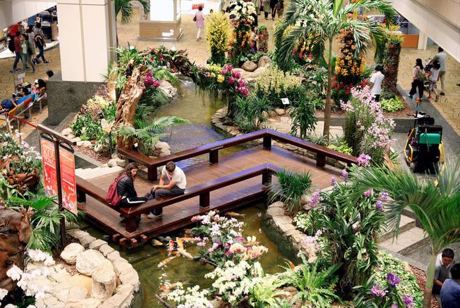 Changi có nhiều tiện nghi mua sắm, giải trí thế này, bảo sao luôn nằm trong top sân bay được ưa thích nhất thế giới - Ảnh 5.