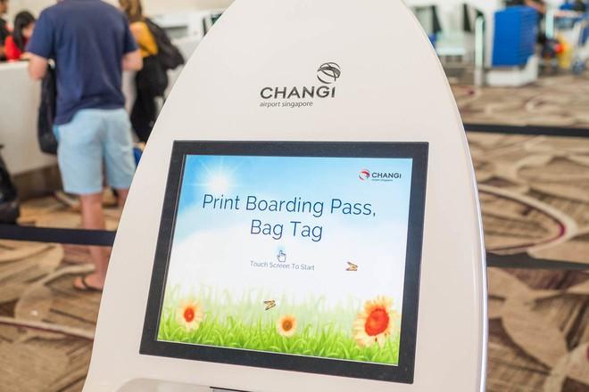Changi có nhiều tiện nghi mua sắm, giải trí thế này, bảo sao luôn nằm trong top sân bay được ưa thích nhất thế giới - Ảnh 9.