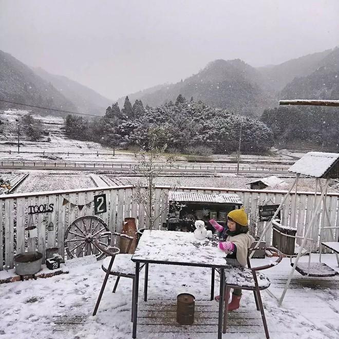 Ngôi nhà nhỏ và cuộc sống đơn sơ của gia đình Nhật Bản ở làng quê khiến bao người ngưỡng mộ - Ảnh 14.