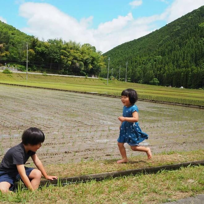 Ngôi nhà nhỏ và cuộc sống đơn sơ của gia đình Nhật Bản ở làng quê khiến bao người ngưỡng mộ - Ảnh 17.
