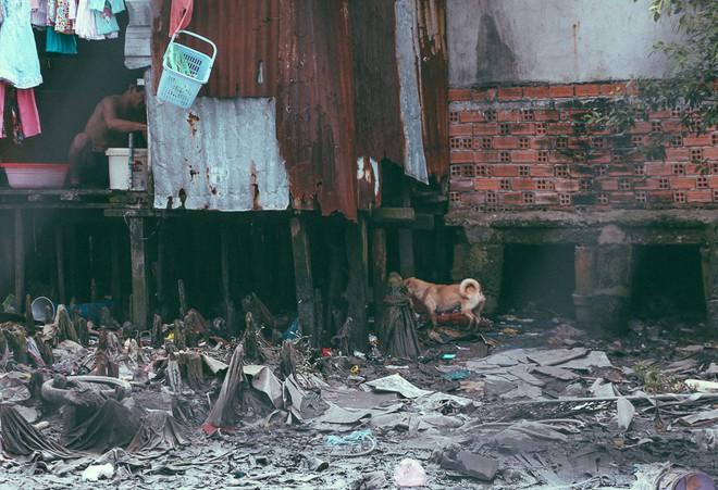 Cuộc sống ngập ngụa mùi rác bên cạnh con rạch ô nhiễm nhất Sài Gòn - Ảnh 10.