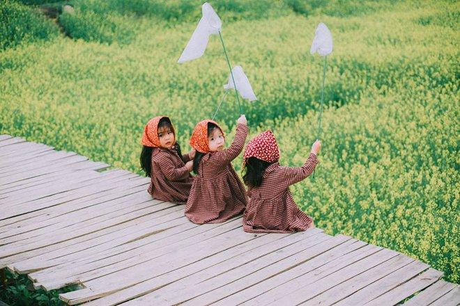 Bộ ba bạn thân Mầm - Mũm - Mon xuất hiện siêu yêu trong bộ ảnh chụp trên cánh đồng hoa cải - Ảnh 2.