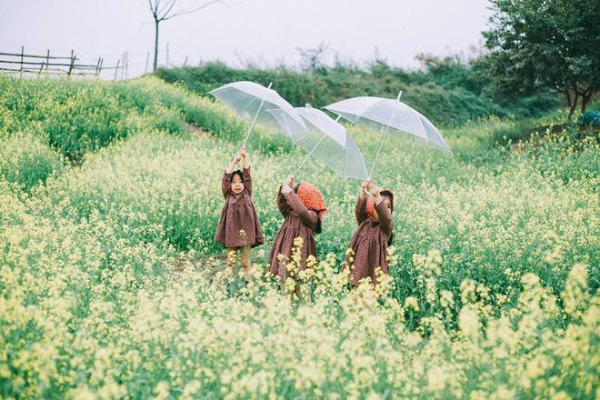 Bộ ba bạn thân Mầm - Mũm - Mon xuất hiện siêu yêu trong bộ ảnh chụp trên cánh đồng hoa cải - Ảnh 6.