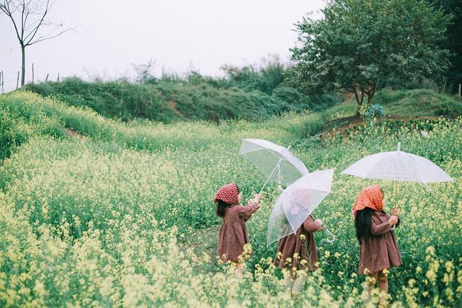 Bộ ba bạn thân Mầm - Mũm - Mon xuất hiện siêu yêu trong bộ ảnh chụp trên cánh đồng hoa cải - Ảnh 7.