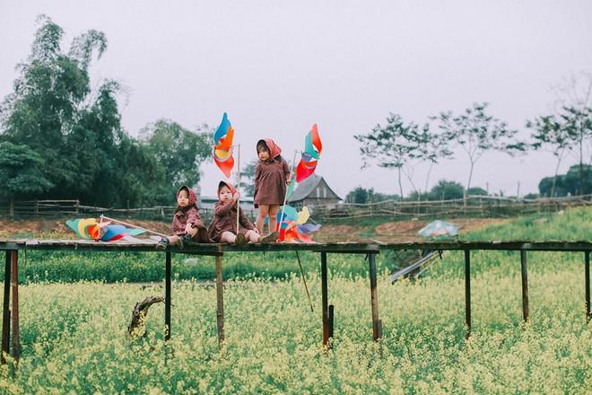 Bộ ba bạn thân Mầm - Mũm - Mon xuất hiện siêu yêu trong bộ ảnh chụp trên cánh đồng hoa cải - Ảnh 10.