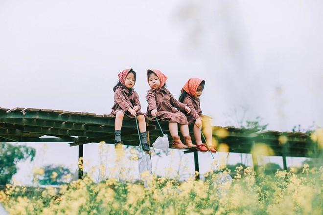 Bộ ba bạn thân Mầm - Mũm - Mon xuất hiện siêu yêu trong bộ ảnh chụp trên cánh đồng hoa cải - Ảnh 11.