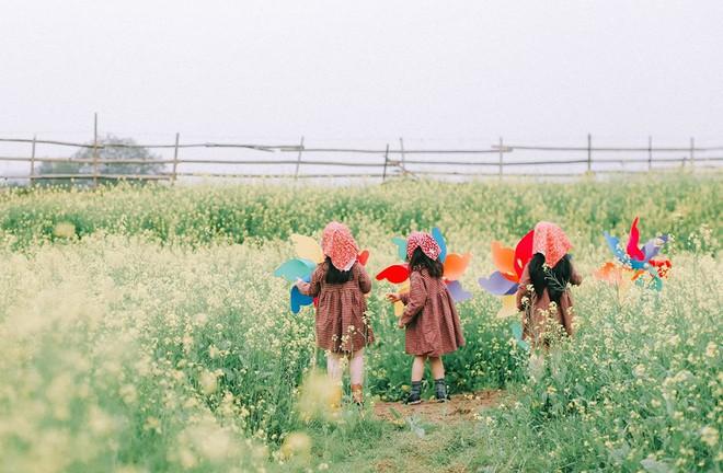 Bộ ba bạn thân Mầm - Mũm - Mon xuất hiện siêu yêu trong bộ ảnh chụp trên cánh đồng hoa cải - Ảnh 13.