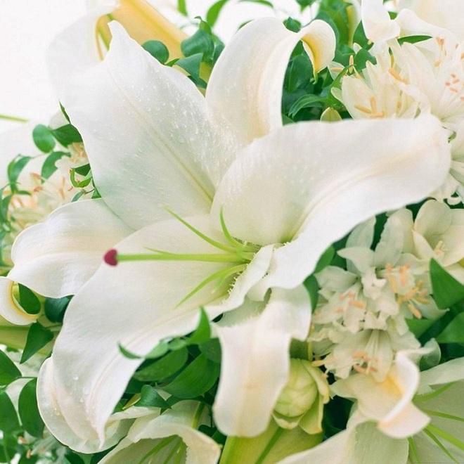 Cứ dịp Tết đến mọi người lại đi mua 10 loại hoa này để trang trí nhà cầu may - Ảnh 10.