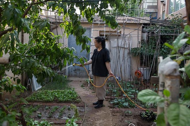 Ngôi nhà được cải tạo bằng vật liệu tái chế và cuộc sống ý nghĩa của cô gái quanh năm thu lượm rác thải để làm sạch môi trường - Ảnh 7.