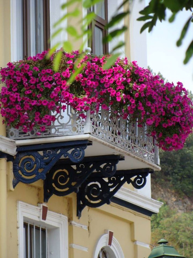Ban công tràn ngập sắc hè nhờ trang trí với hoa tươi siêu ấn tượng - Ảnh 3.