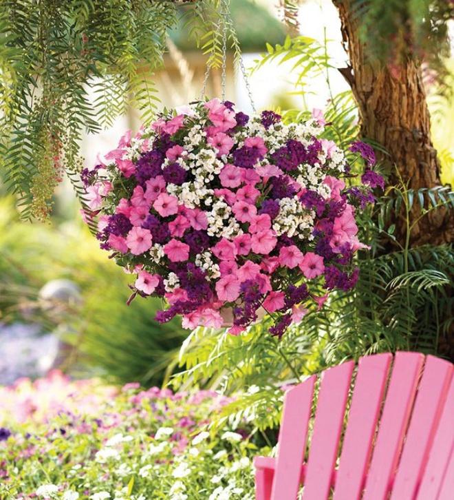 Ban công tràn ngập sắc hè nhờ trang trí với hoa tươi siêu ấn tượng - Ảnh 11.