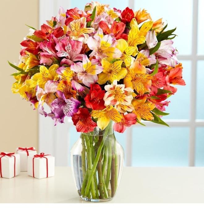 Bạn có thể tự tin mua bất kỳ loài hoa nào dịp Tết khi biết 4 cách chăm sóc hoa đơn giản này - Ảnh 5.