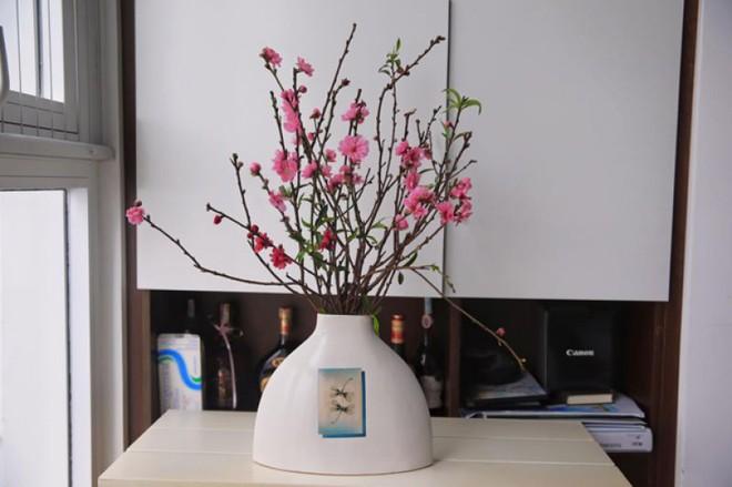 Bạn có thể tự tin mua bất kỳ loài hoa nào dịp Tết khi biết 4 cách chăm sóc hoa đơn giản này - Ảnh 7.