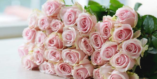 Bạn có thể tự tin mua bất kỳ loài hoa nào dịp Tết khi biết 4 cách chăm sóc hoa đơn giản này - Ảnh 8.