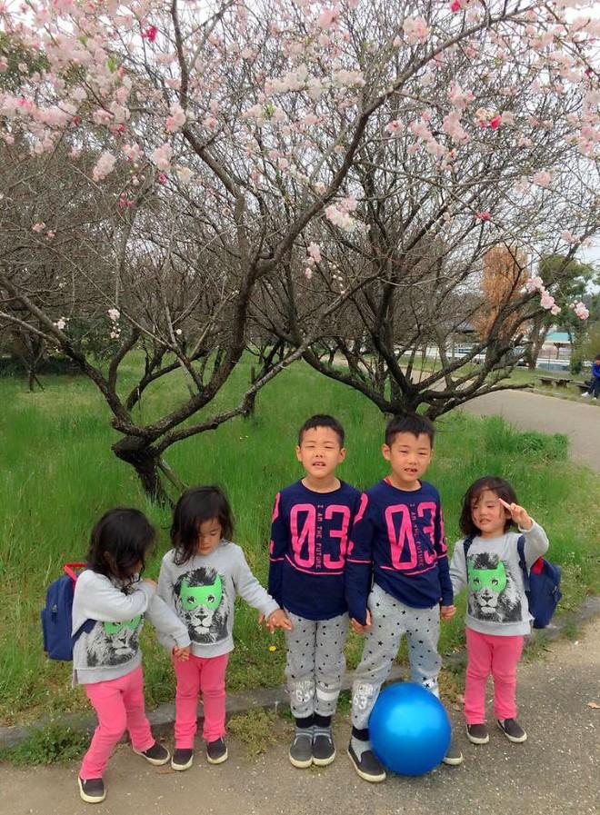 """Mẹ Nhật hot rần rần khi khoe ảnh gia đình với 1 cặp sinh đôi, 1 cặp sinh ba, đi đâu cũng """"ton sur ton"""" - Ảnh 17."""